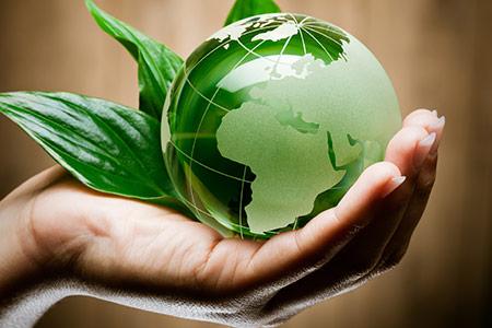 umweltfreundlicher-umzug-transport